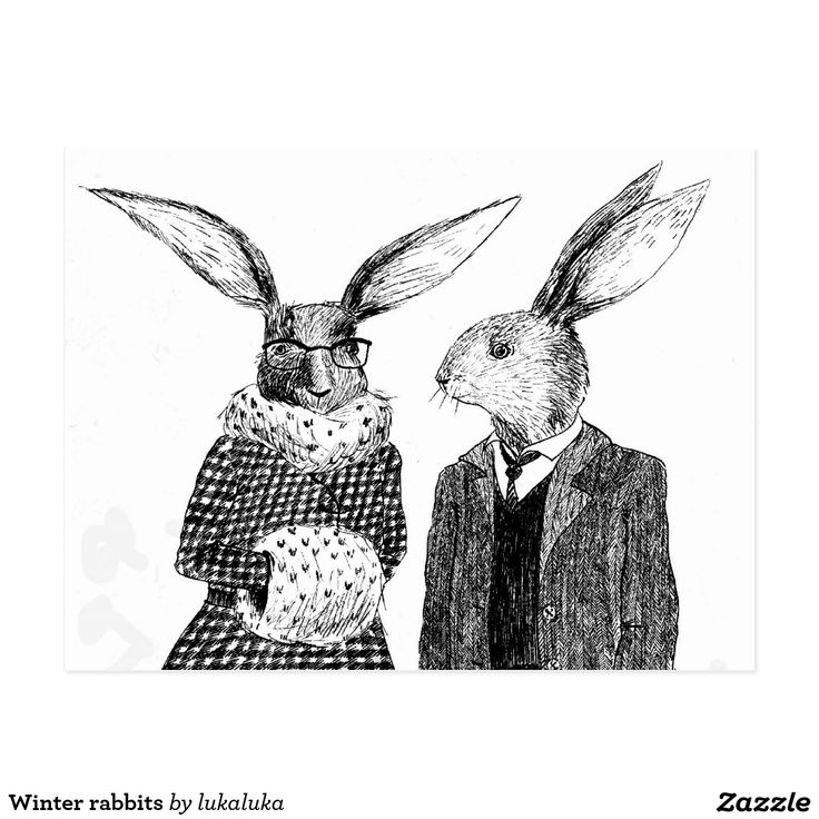 Winter rabbits postcard - How cute are these guys? I am slightly biased due to having a free range bunny here!