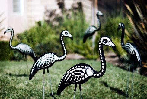 Skel-a-mingos! great Halloween decor for South Florida. I love them! $7.95/a pair for 6 pairs or more. Or $12/pair with a coffin!Halloween Decorations, Lawns Ornaments, Pink Flamingos, Florida, Skeletons Flamingos, Front Yards, Home Decor, Painting, Diy Halloween Decor