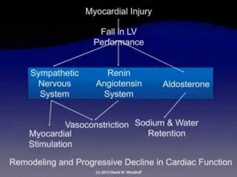 David Woodruff (Ed4Nurses.com): Pathophysiology of Heart Failure - YouTube