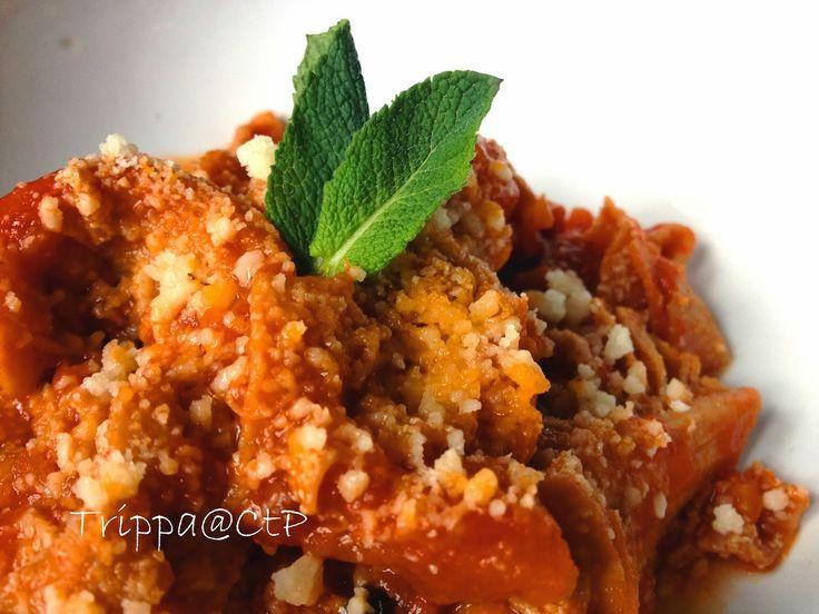 ricetta trippa alla romana trippa menta parmigiano