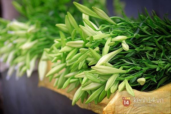 Tháng 4, hoa loa kèn trắng lại rong ruổi khắp phố Hà Nội 1