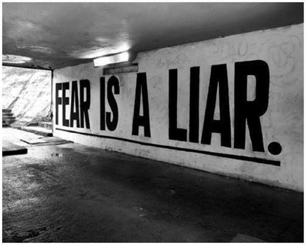 """""""Too many of us are not living our dreams because we are living our fears."""" ~ Les Brown"""