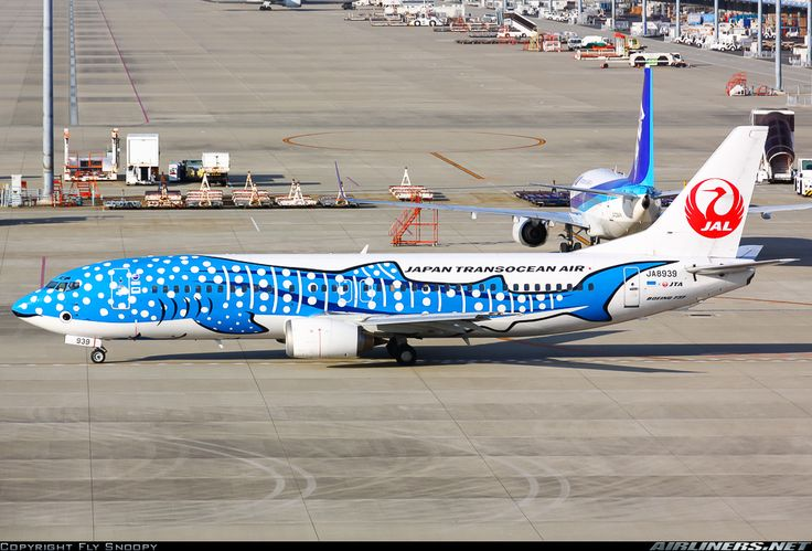 "Japan TransOcean Air Boeing 737-4Q3 JA8939 ""Jinbei Jet"" at Nagoya-Chūbu Centrair, December 2014. (Photo: Fly Snoopy)"
