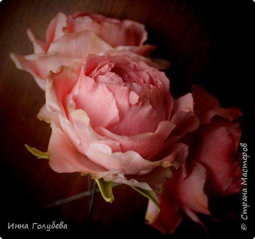 Привет всем жителям! Сегодня пионовидные розы и небольшой МК по ним) фото 2