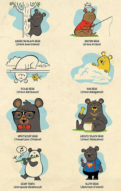 I <3 Bears: The eight different bear species. by skinnyandy, via Flickr