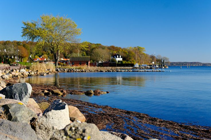 Dyreborg Harbor