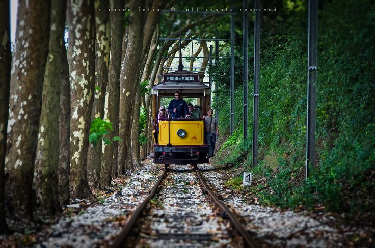 Let's get a ride! by Ricardo Bahuto Felix on 500px