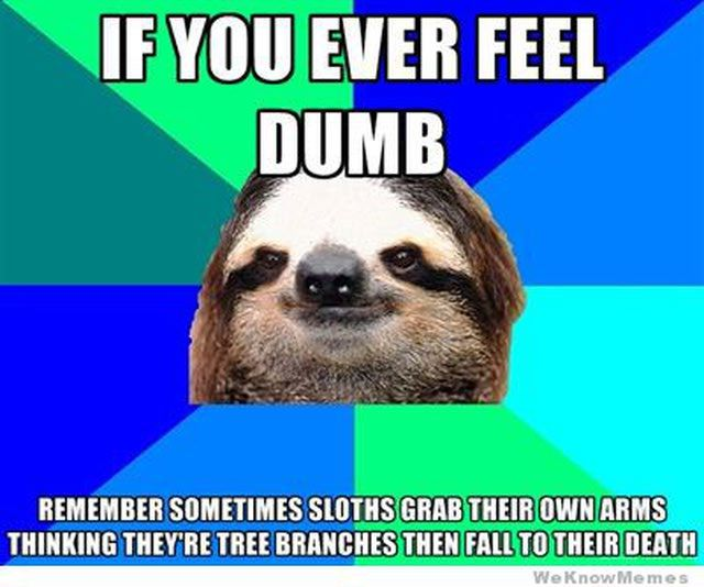 Best Sloth Memes: A good reminder.