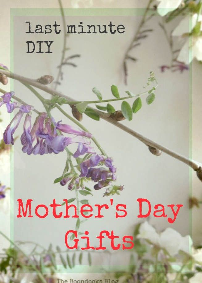 A collection of last minute gift ideas for Mothers Day #GiftIdeas #MothersDay #DIYprojects #Makeyour owngift #totes #tincans #repurposes Last Minute DIY Mother's Day Gifts theboondocksblog.com