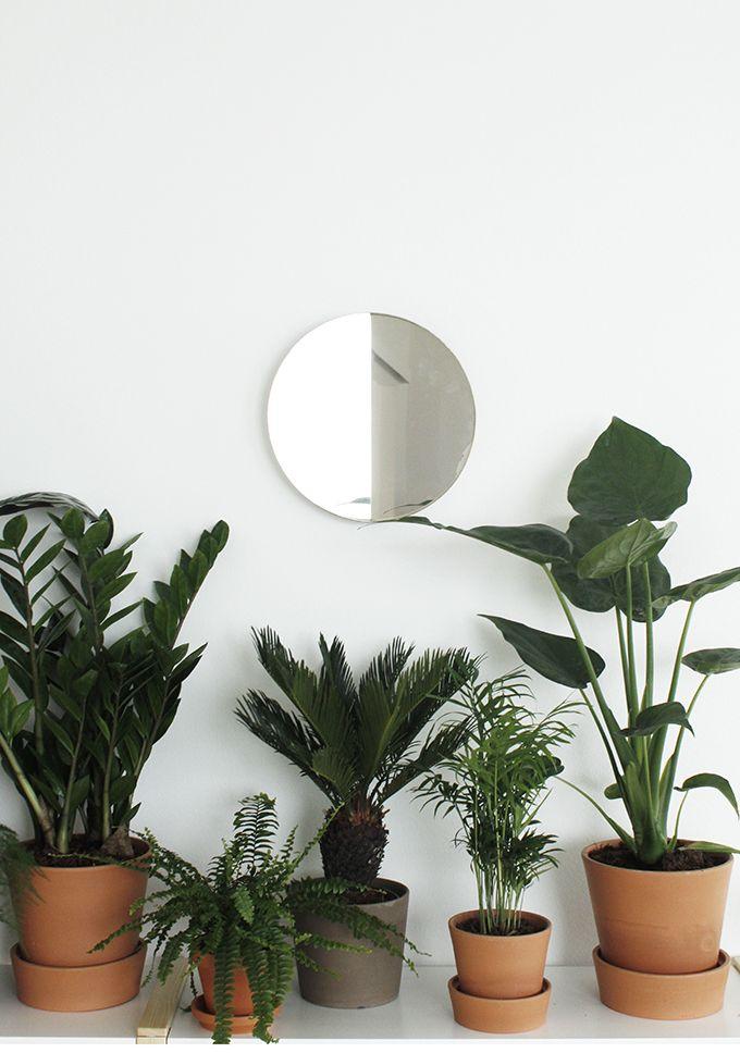 susanna vento sato project green plants mirror ems designblogg: