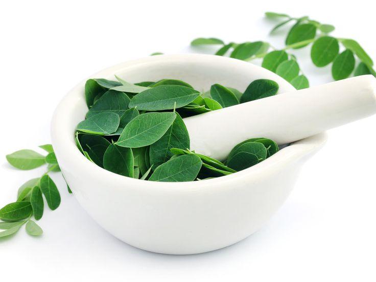 Die Blätter der Moringa-Pflanze werden vielseitig verarbeitet und sind sehr gesund
