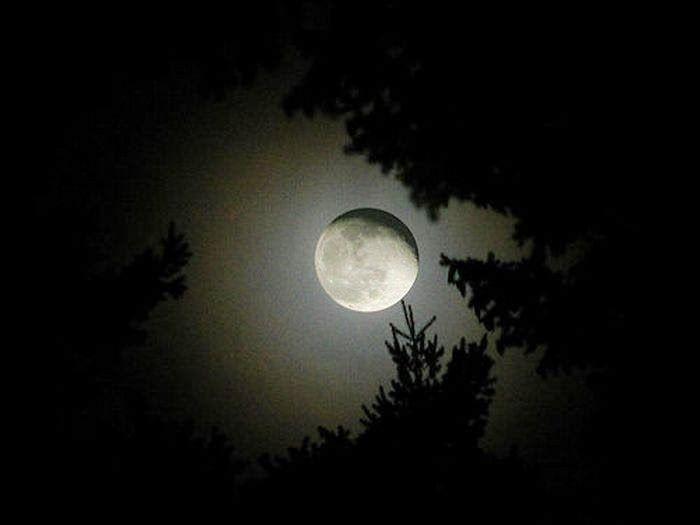Просто и обо всем: Завораживающие фотографии луны
