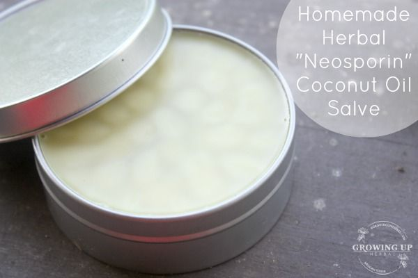 """How To Make an Herbal """"Neosporin"""" Coconut Oil Salve 