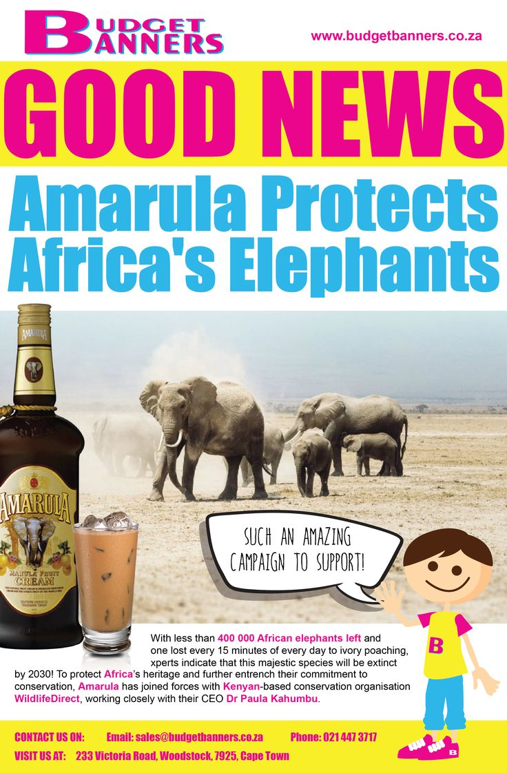 In an effort to combat ivory poaching, Amarula is campaigning to  protect the #AfricanElephants. #GoodNewsMonday