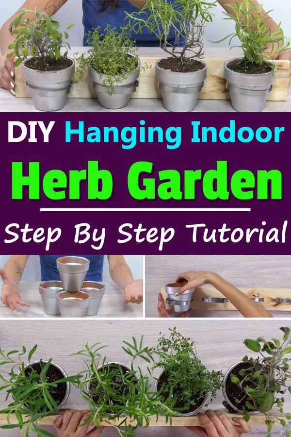 Diy Hanging Indoor Herb Garden Indoor Herb Garden Herbs Indoors
