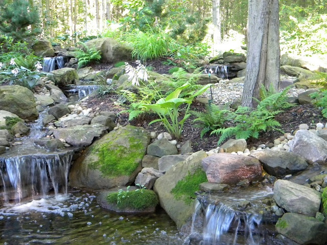 134 best images about water gardens koi ponds on for Koi pool water gardens thornton