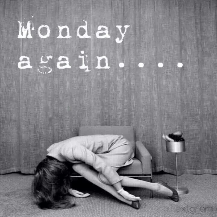 Monday.  Again....... #Monday #Funny #humor