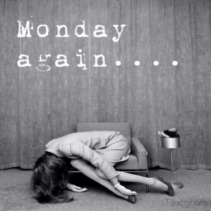 Monday.  Again....... #Monday #Funny #humor
