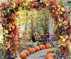 pumpkin lined path   leaf covered arbor | Autumn Ideas