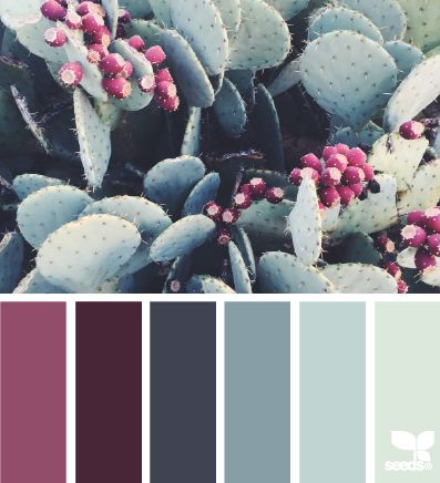 Invierno colorido