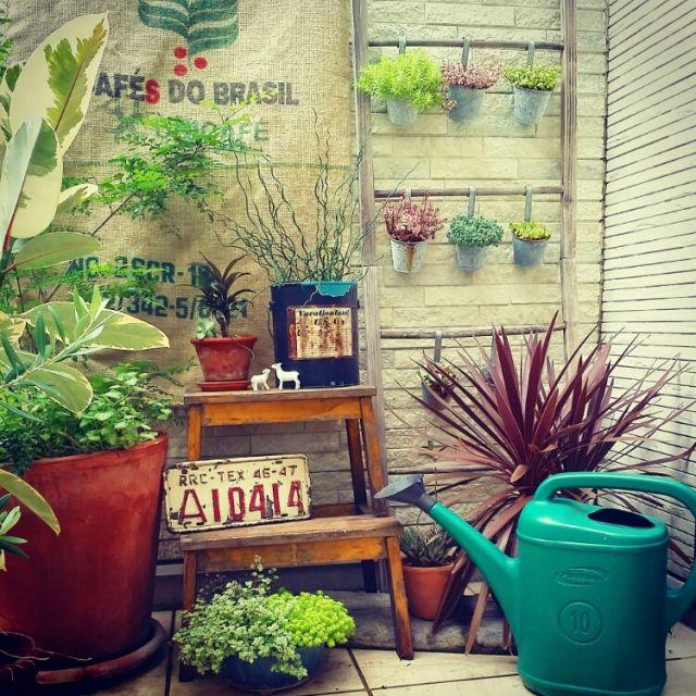 IKEA/100均/セリア/ジャンク/観葉植物/植物…などのインテリア実例 - 2015-02-08 23:12:46 | RoomClip(ルームクリップ)