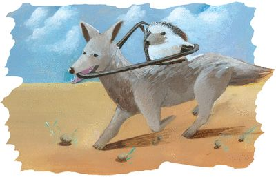Le chacal et le hérisson - illustration 1