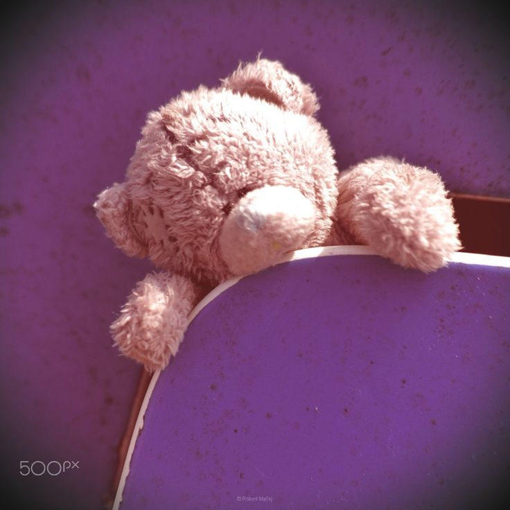 Teddy bear by Róbert Mačej on 500px
