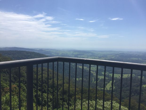 Jamberoo Lookout – An Orchid's View