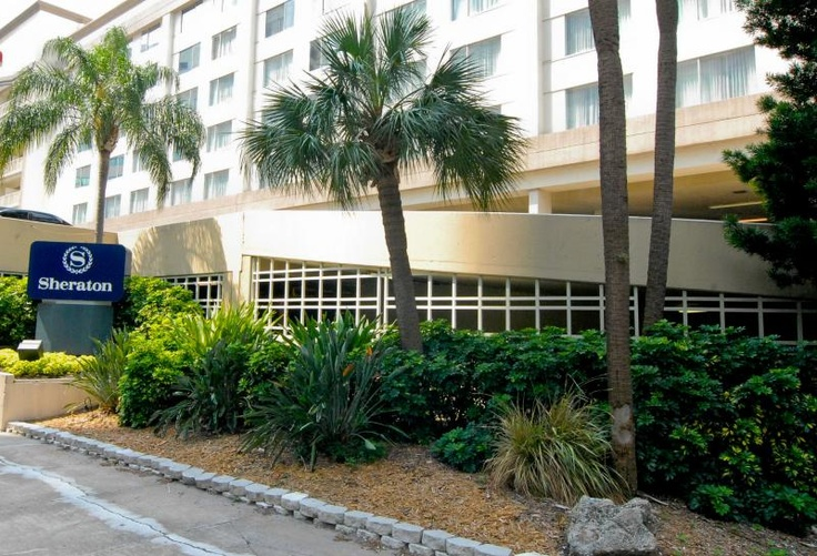 Check out this beautiful array of #plants outside the Sheraton #Tampa Riverwalk!