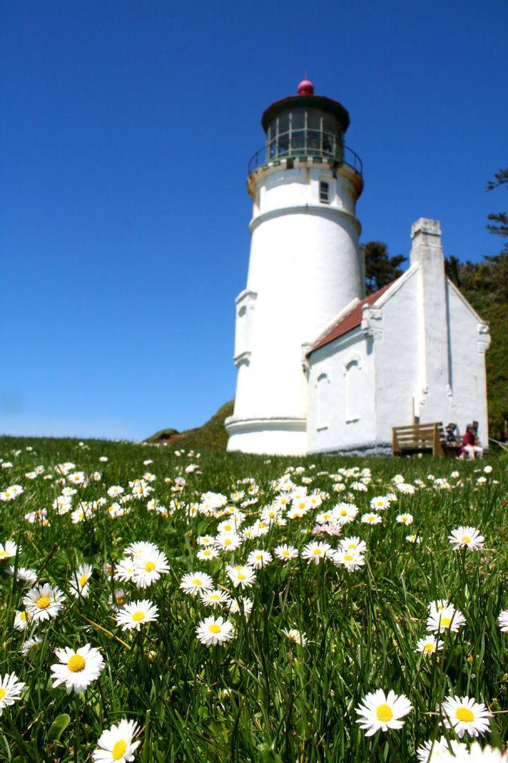 Heceta Head Lighthouse & flowers