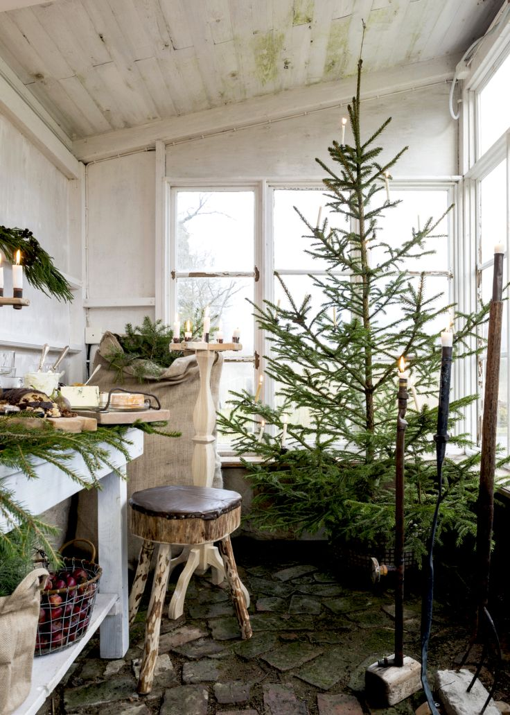 a scandinavian christmas dinner in the greenhouse | coco kelley