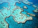 Great Barrier Reef!: Favorit Place, Buckets Lists, Beauty Earth, Australia, Mothers Nature, Beauty Place, Travel Dream, Great Barrier Reefs, Travel Buckets