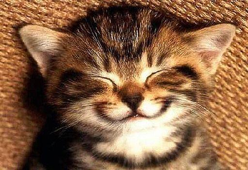 Smile... it's contagious
