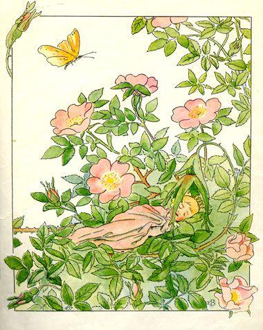 By Swedish illustrator Elsa Beskow. Vintage Illustration Art