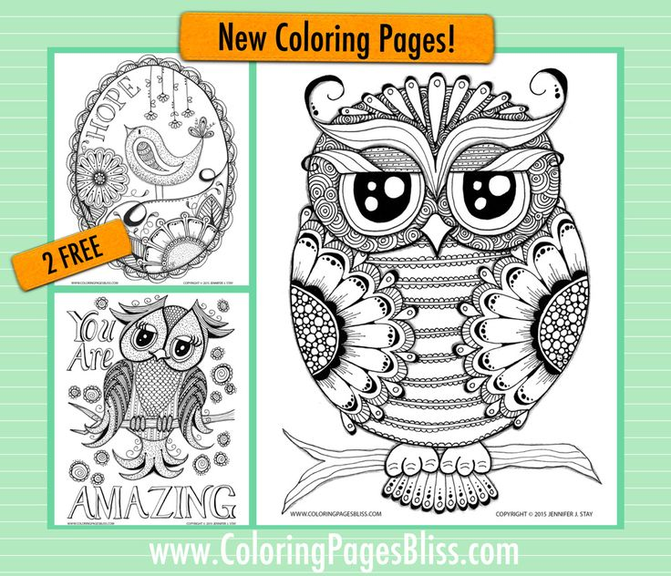 Free Coloring Pages For Adults Beautiful Bird Bliss