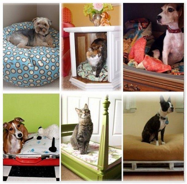 Делаем кровати для животных  http://styldoma.ru/sdelaj-sam/krovati-dlya-zhivotny-h