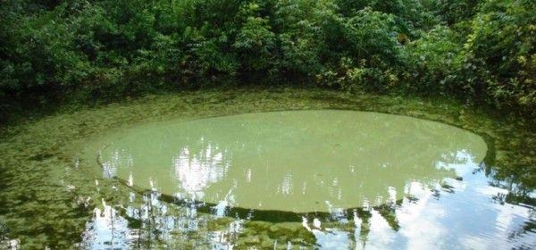 Jalapão, Tocantins                                                                                                                                                                                 Mais