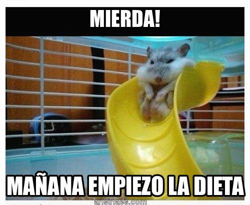 Mañana empiezo la dieta @Daniel Morgan Arana  @Cecilia Börjesson Leon  @Mariana Lafrance Martinez