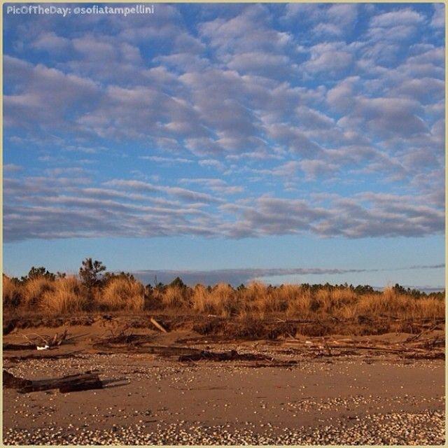 La #PicOfTheDay #turismoer di oggi ci porta...tra le strade desertiche della lontana Arizona? Ma no! Questa è la spiaggia del Lido di Classe :) Complimenti e grazie a @sofiatampellini