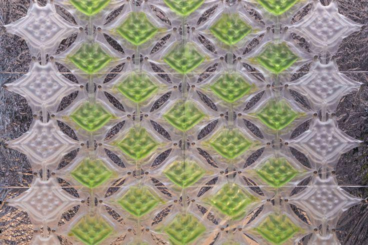 ALGAETECTURE | EXPO 2015 PREVIEW: Algae systems to design and feed the city | cesare griffa architetto