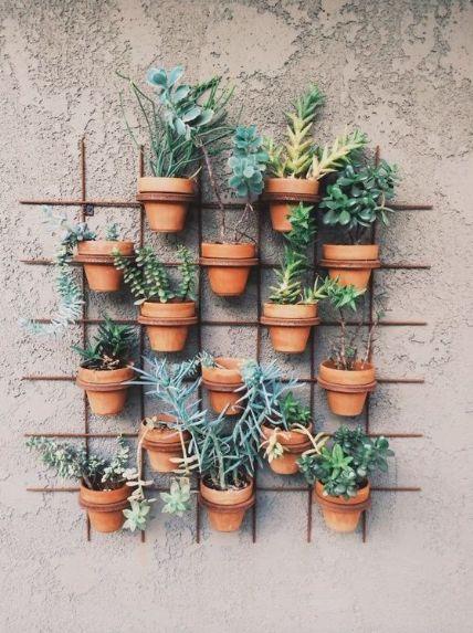 Jardim vertical: dicas para o cultivo