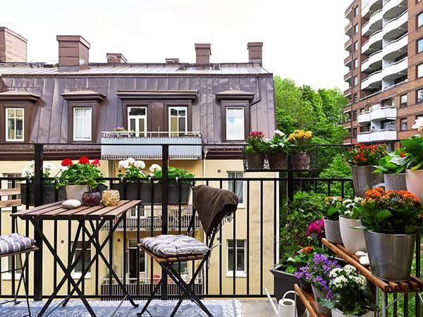 Les 54 meilleures images à propos de balkony garden sur pinterest ...