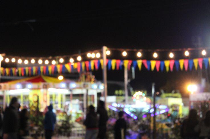 Feria. Casablanca. Quinta Región. Octubre 2016