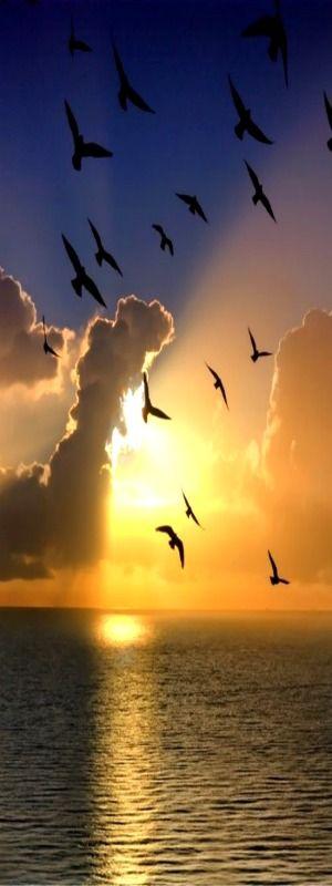 """""""Adoren al que hizo el cielo y la tierra y el mar y las fuentes de las aguas"""" (Revelación 14:7)  (Golden Sunset) SB"""