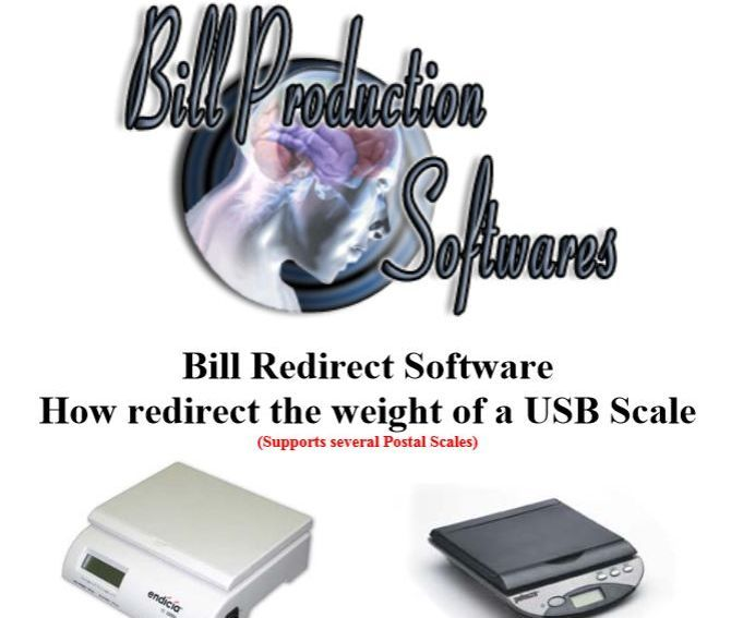 Inputs USB scale and balance weight into any Windows application software