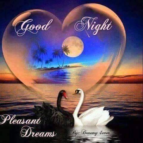 romantic-good-night-quotes-014