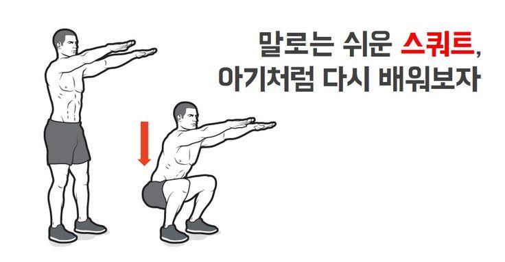 스쿼트. 바벨 백 스쿼트. 케틀벨 가블렛 스쿼트나 프론트 스쿼트.  가장 대표적인 운동이고, 몸짱을 희망하든 힘짱을 희망하든 하지 않을 수 없는 운동이기도 합니다.일단 스쿼트는 우리가 수시로 하는 동작입니다. 다만 현대사회에서는 점점 수행하는 빈도가 줄어든다는 것뿐이죠.양변기를 사용하니 좌변기를 이용할 때보다 덜 쪼그려 앉고 바닥에 주저앉아 담소를 나누는 일도 거의 없죠.대신 의자에 앉아 있는 시간이 훨씬 많습니다.  그래서일까요? 언제부터인가 스쿼트라고 하면 무릎 높이까지만 엉덩이가