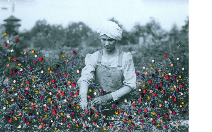 aaronrinas.com #embroidery #paper #pattern #flowers