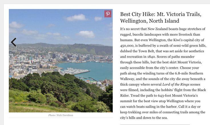 Mt Victoria trails, Wellington-North Island