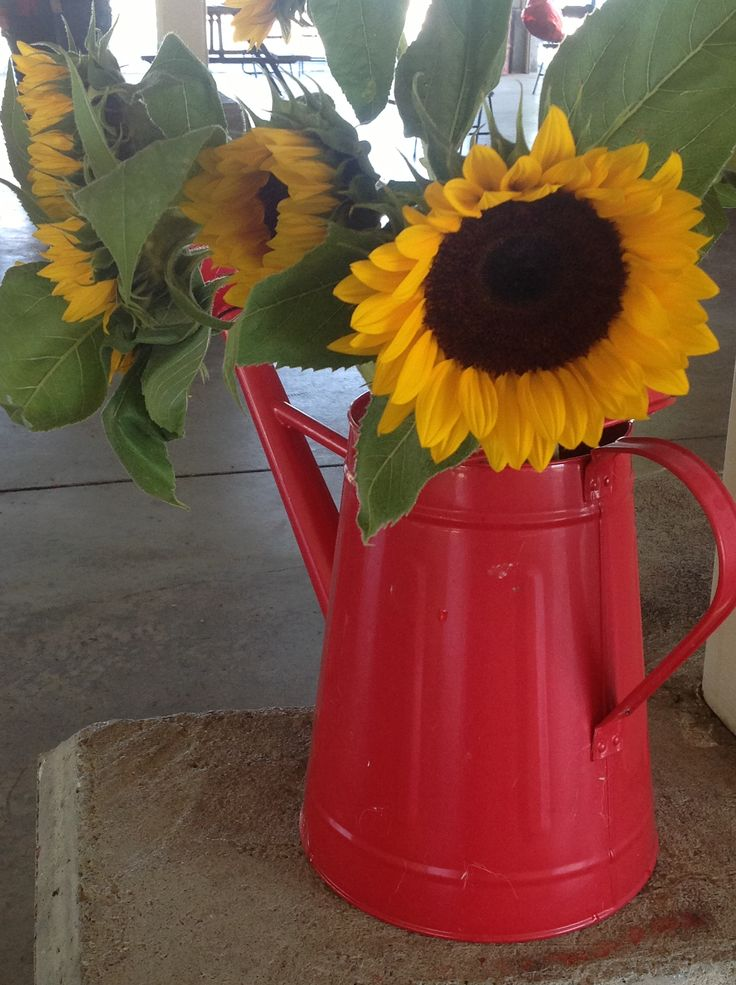 Best images about rustic sunflower and burlap themed